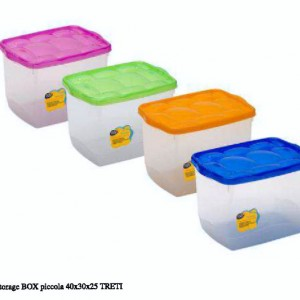 Storage Box piccola 40x30x25 treti